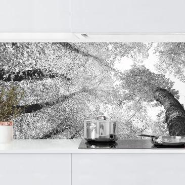 Produktfoto Küchenrückwand - Bäume des Lebens II vergrößerte Ansicht in Wohnambiente Artikelnummer 235792-XWA