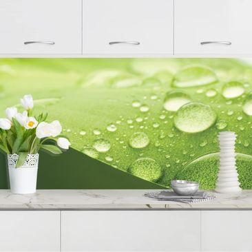 Produktfoto Küchenrückwand - Drops of Nature vergrößerte Ansicht in Wohnambiente Artikelnummer 235807-XWA