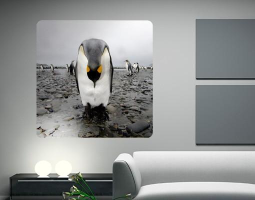 Produktfoto Selbstklebendes Wandbild Pinguin