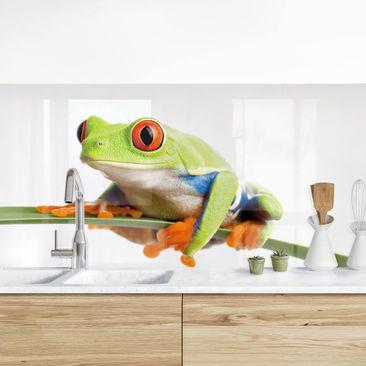 Produktfoto Küchenrückwand - Weatherman vergrößerte Ansicht in Wohnambiente Artikelnummer 235943-XWA