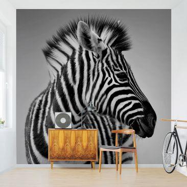 Produktfoto Tapete selbstklebend - Zebra Baby Portrait II - Fototapete Quadrat