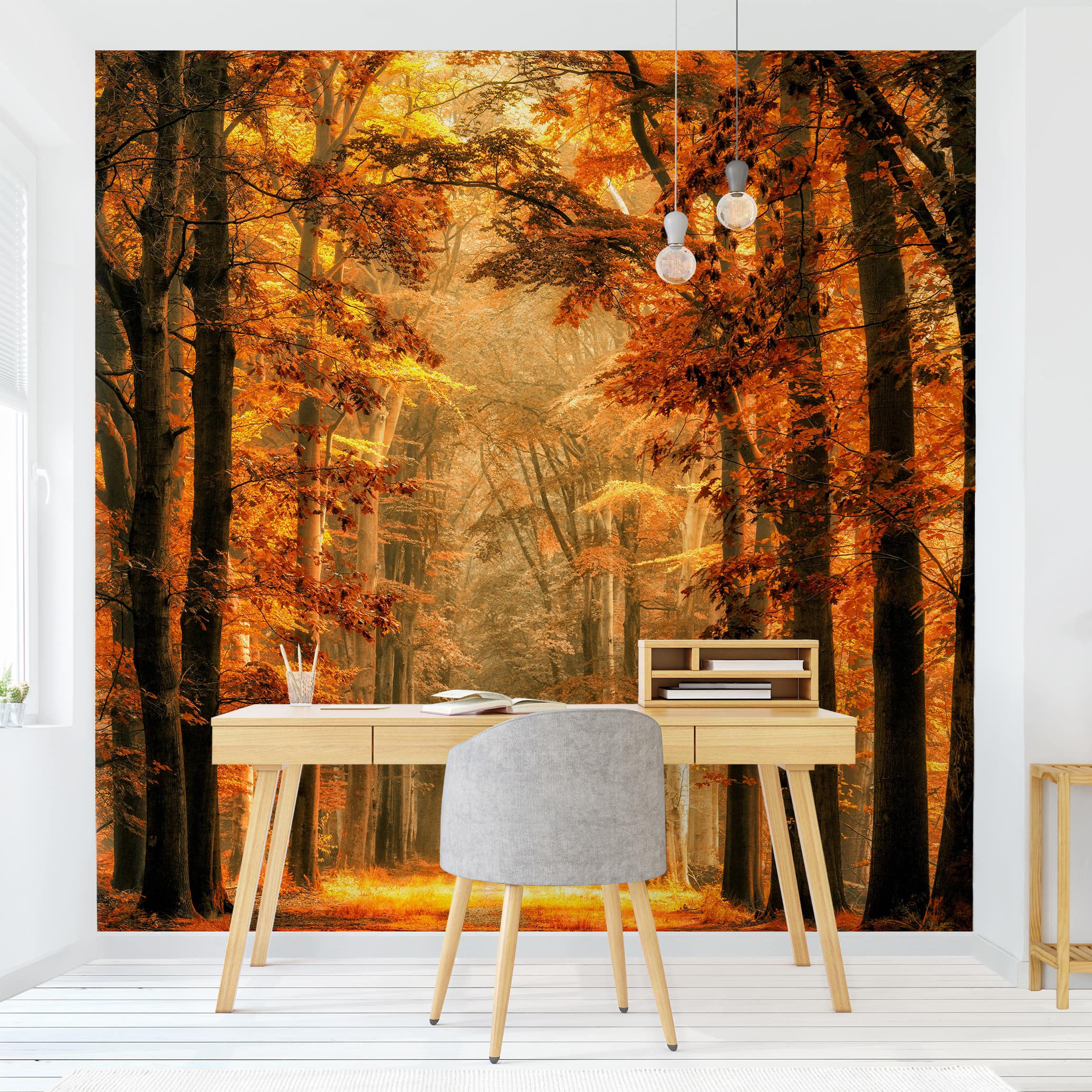 Photo Wall Mural Enchanted Forest In Autumn Self Adhesive Wallpaper Square Format