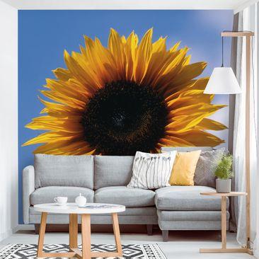 Produktfoto Tapete selbstklebend - Sunflower Trio Teil 1 - Fototapete Quadrat