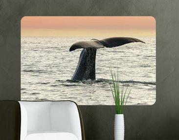 Produktfoto Wall Mural Diving Whale