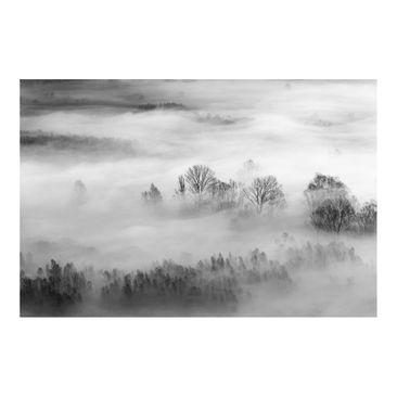 Produktfoto Fototapete - Nebel bei Sonnenaufgang Schwarz Weiß - Fototapete Breit