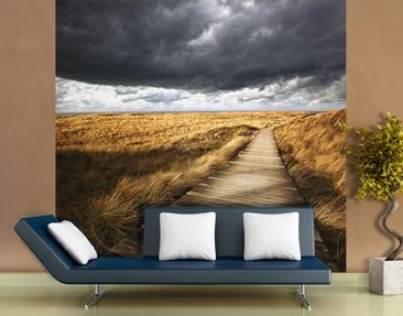Produktfoto Photo Wall Mural Pathway Through The...