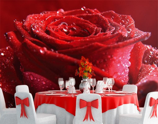 "Produktfoto Papiertapete – Fototapete No.102 ""PROUD RED ROSE"" 400x280cm"