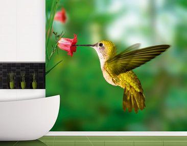 """Immagine del prodotto Carta da parati no.122 """"YELLOW HUMMINGBIRD"""" 300x280cm"""