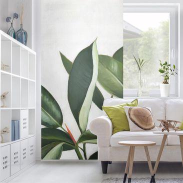 Produktfoto Raumteiler - Lieblingspflanzen - Gummibaum - 250x120cm