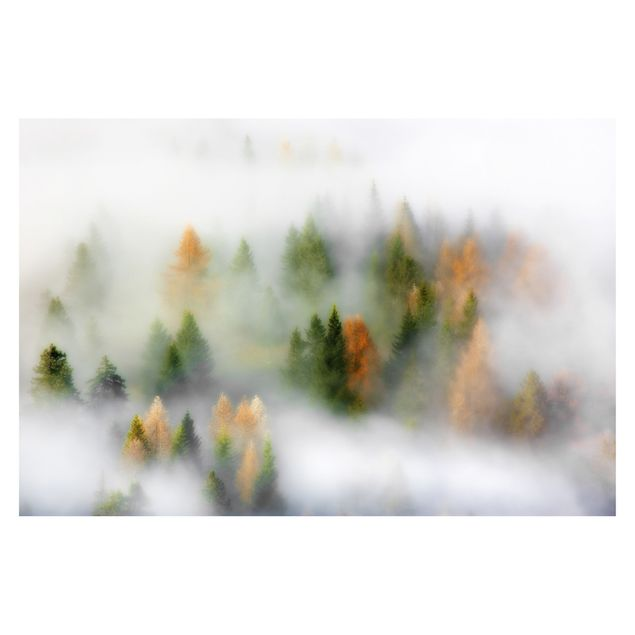 Produktfoto Fototapete - Nebelwald im Herbst - Fototapete Breit