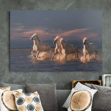 Produktfoto Leinwandbild - Wilde Pferde in Kamargue - Querformat 2-3 vergrößerte Ansicht in Wohnambiente Artikelnummer 245948-XWA