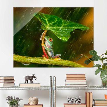 Produktfoto Glasbild - Ein Frosch im Regen - Querformat 3:4