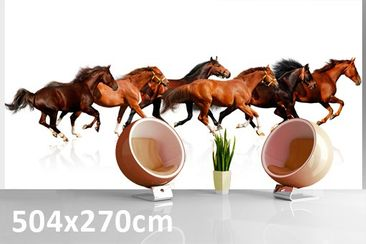Product picture Photo Wall Mural Horse Drove 504x270cm