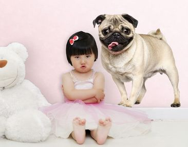 Produktfoto Wall Decal no.419 Jolly Like A Pug