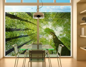 Produktfoto Window Mural Trees Of Life