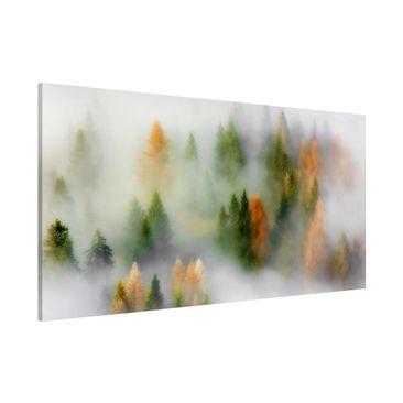 Produktfoto Magnettafel - Nebelwald im Herbst - Memoboard Panorama Querformat 1:2