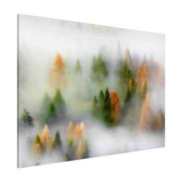 Produktfoto Magnettafel - Nebelwald im Herbst - Memoboard Querformat 3:4