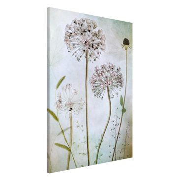 Product picture Magnetic Board - Allium flowers in...