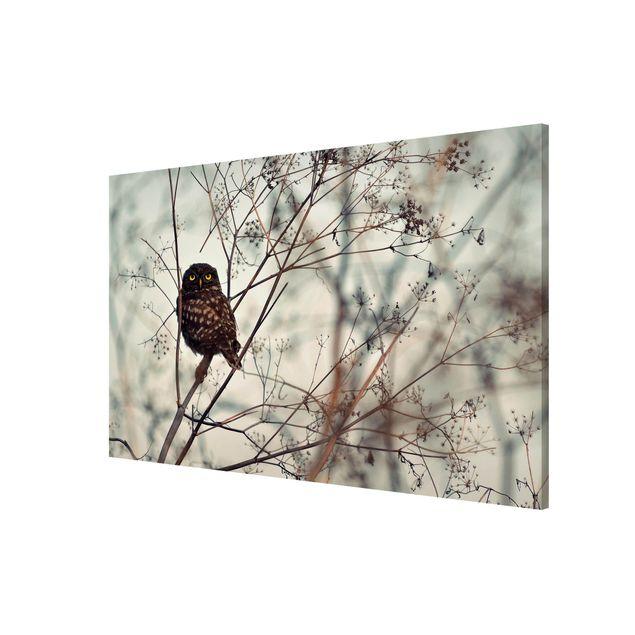 Produktfoto Magnettafel - Eule im Winter - Memoboard Querformat 2:3
