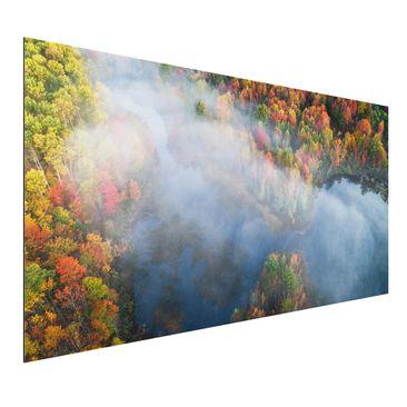 Immagine del prodotto Stampa su alluminio - Veduta aerea - Sinfonia d'autunno - Orizzontale 1:2