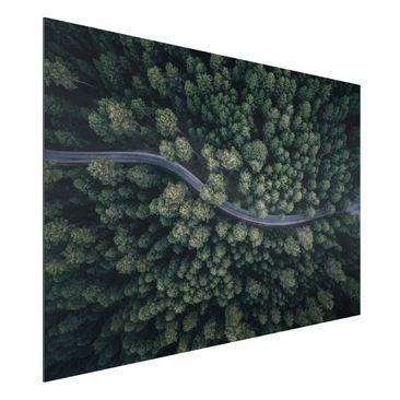 Produktfoto Aluminium Print - Luftbild - Waldstraße von Oben - Querformat 2:3