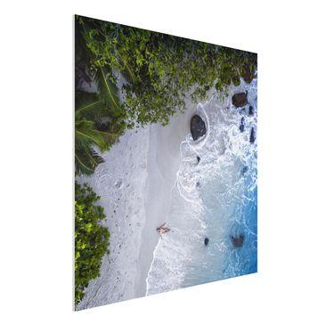 Produktfoto Forex Fine Art Print - Das Paradies auf Erden - Quadrat 1:1
