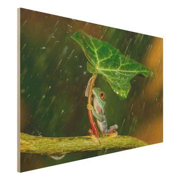 Immagine del prodotto Stampa su legno - Rana In The Rain - Orizzontale 2:3