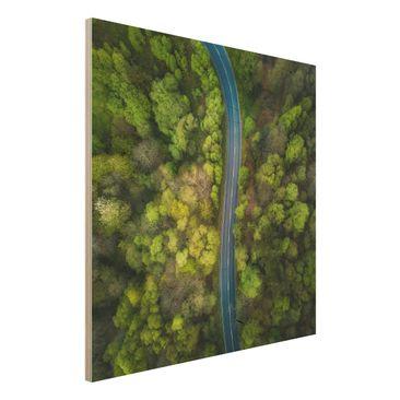 Produktfoto Holzbild - Luftbild - Asphaltstraße im Wald - Quadrat 1:1