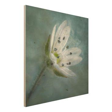 Produktfoto Holzbild - Weiße Blüte auf blau - Quadrat 1:1
