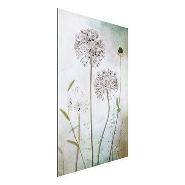 Produktfoto Aluminium Print - Lauchblüten in Pastell - Hochformat 3:2