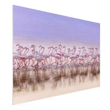 Produktfoto Forex Fine Art Print - Flamingo Party - Querformat 2:3
