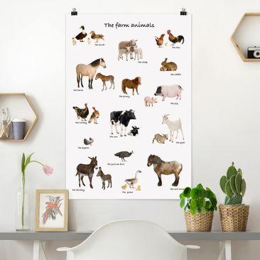 Immagine del prodotto Poster - fattoria Animali - Verticale 3:2