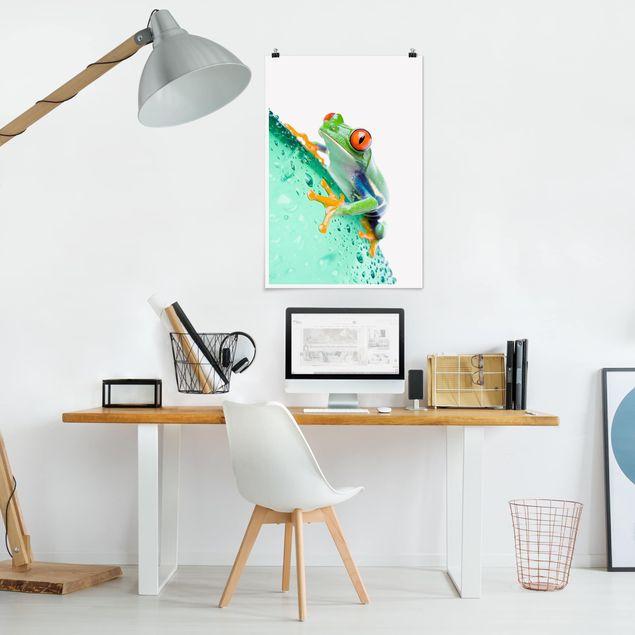 Produktfoto Poster - Frog - Hochformat 3:2