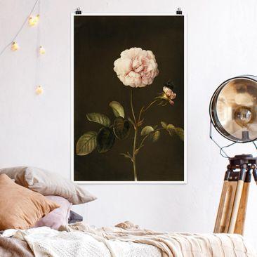 Produktfoto Poster - Barbara Regina Dietzsch - Essig-Rose mit Hummel - Hochformat 3-2 vergrößerte Ansicht in Wohnambiente Artikelnummer 249871-XWA