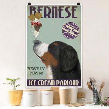 Produktfoto Poster - Berner Sennenhund mit Eis - Hochformat 3-2 vergrößerte Ansicht in Wohnambiente Artikelnummer 250064-XWA