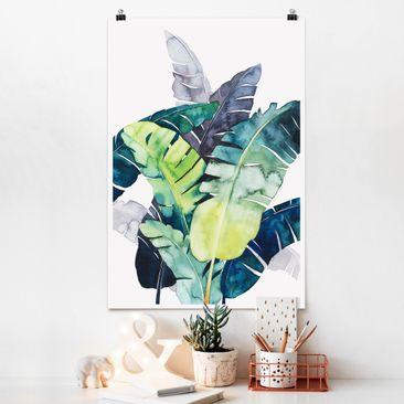 Produktfoto Poster - Exotisches Blattwerk - Banane - Hochformat 3-2 Material matt Artikelnummer 250129-CU