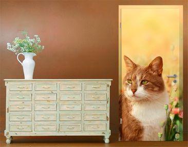 Produktfoto TürTapete Katze im Mohnfeld