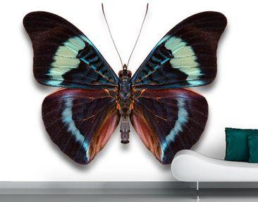Produktfoto Selbstklebende Tapete - Fototapete Lepidoptera