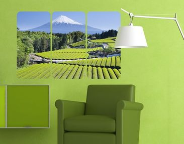 Produktfoto Wall Mural Tea Fields In Front Of The...