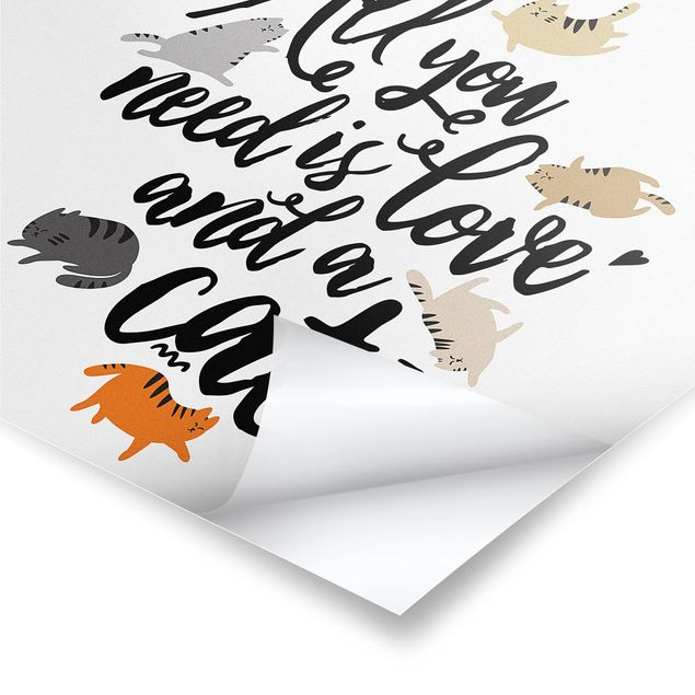 Produktfoto Poster - All you need is love and a cat - Quadrat 1:1