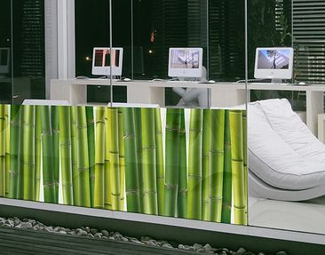 Produktfoto Window Mural Bamboo Plants