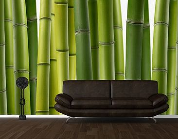 Produktfoto Photo Wall Mural Bamboo Plants