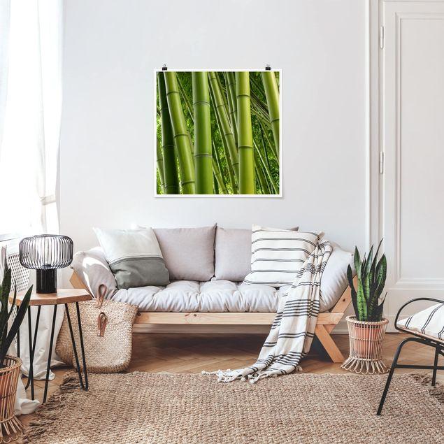 Produktfoto Poster - Bamboo Trees - Quadrat 1:1