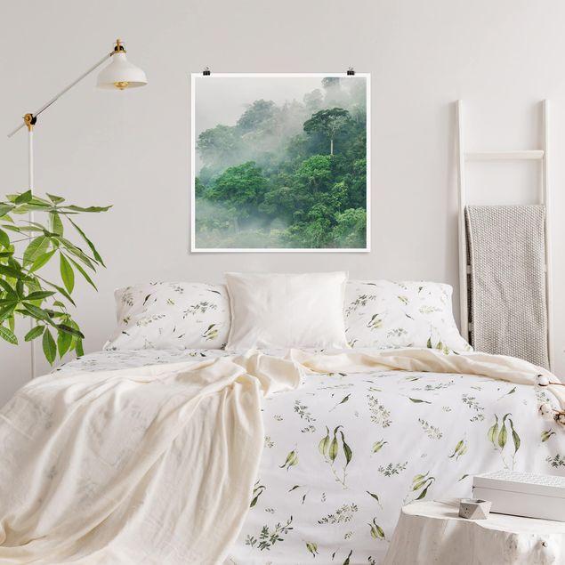 Produktfoto Poster - Dschungel im Nebel - Quadrat 1:1