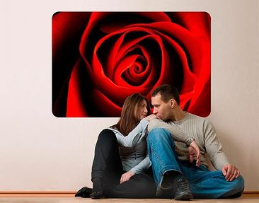Produktfoto Wall Mural Lovely Rose