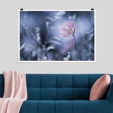 Immagine del prodotto Poster - Bloom In Pastel - Orizzontale 2:3