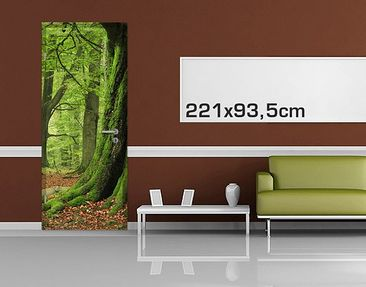 Product picture Door Photo Wall Mural Mighty Beech Trees