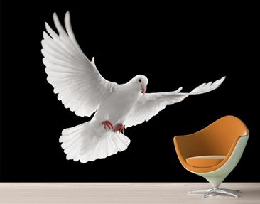 Produktfoto Photo Wall Mural Dove Of Peace