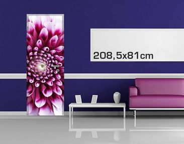 Product picture Door Photo Wall Mural Aster