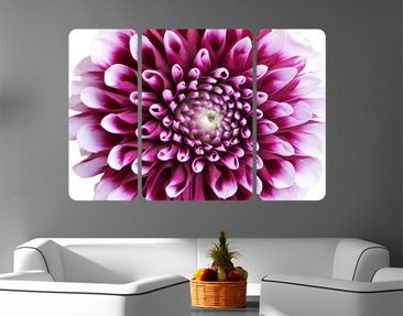Product picture Wall Mural Aster Triptych II